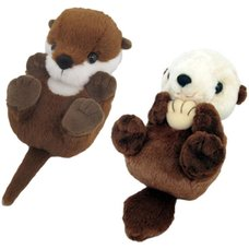 Otta Love Otters! Kyun Kyun Coron Plush Collection