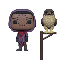 Pop! Games: Destiny Series 2 - Hawthorne w/ Hawk
