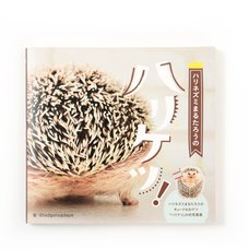 Marutaro the Hedgehog Butt Photo Book