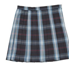 Teens Ever Navy Blue x Blue High School Uniform Skirt