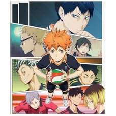 Haikyu!! Vol. 21 Limited Pre-Order Edition w/ Bonus Anime DVD