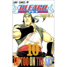 Bleach Vol. 10