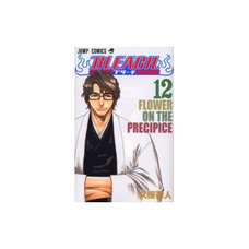 Bleach Vol. 12