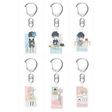 10 Count Acrylic Keychain Charm Collection