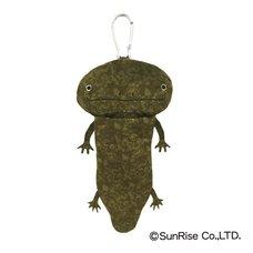 Hola! Salamanders
