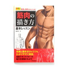 How to Draw Muscles: Basic Lesson