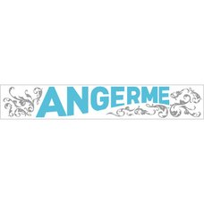 Angerme Taiki Bansei Tour Special Towel