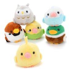 Kotori Tai Bird Plush Collection (Standard)