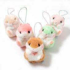 Coroham Coron Cutie Hamster Plush Collection (Mini Strap)