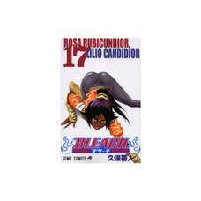 Bleach Vol. 17