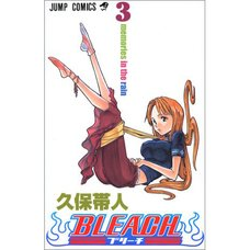 Bleach Vol. 3
