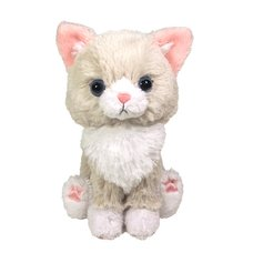 Kitten Plush: Ragdoll