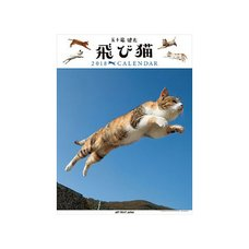 Jump Cat 2018 Calendar