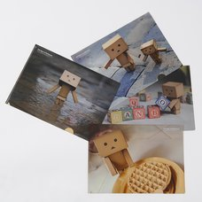 365 Days of Danboard Clear Files