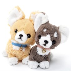PUPS! Small Chihuahua Plush