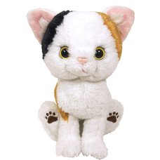 Kitten Plush: Calico
