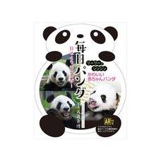 Mannen Mainichi Panda 2018 Calendar