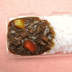 Nintendo Handhelds Curry Case