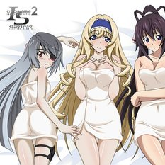 Infinite Stratos 2 Heroines Big Towel