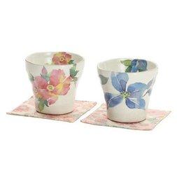 Hana Nikki Mino Ware Rock Cup Set