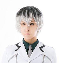 Tokyo Ghoul:re Haise Sasaki Cosplay Wig