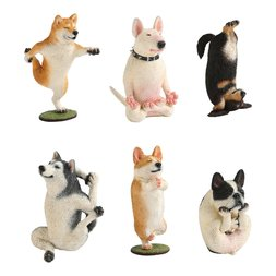 Animal Life Yoga Master Dogs Box Set