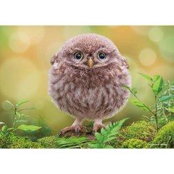 Round Owl Jigsaw Puzzle