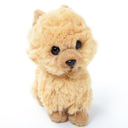 PUPS! Small Pomeranian Plush