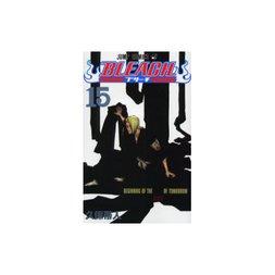 Bleach Vol. 15