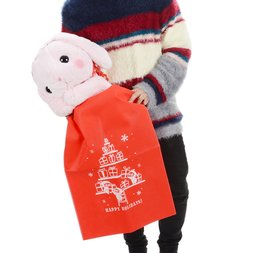 Amuse Big Plush Gift w/ Holiday Gift Bag Set