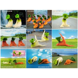 Sexy Sitting Vegetable Ornament Collection Vol. 2