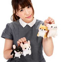 Muchimu Chihuahua Dog Plush Collection (Ball Chain)