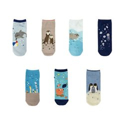 Mini Aquarium Socks