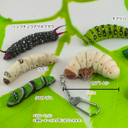 Caterpillar Keychain Collection