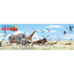 Run & Fly Speed Comparison Jigsaw Puzzle