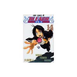 Bleach Vol. 14