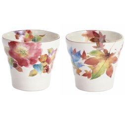 Hana Ozato Mino Ware Rocks Cups