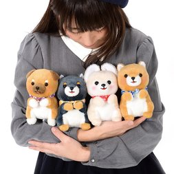 Mameshiba San Kyodai Begging Plush Collection (Standard)