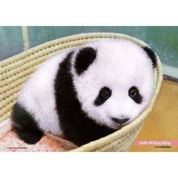 Hello Xian Xian the Panda Jigsaw Puzzle