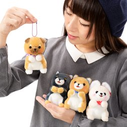 Mameshiba San Kyodai Begging Plush Collection (Ball Chain)