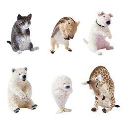 Animal Life Baby Hug Box Set