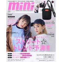 Mini March 2019