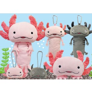 Hola Salamanders Plush Collection