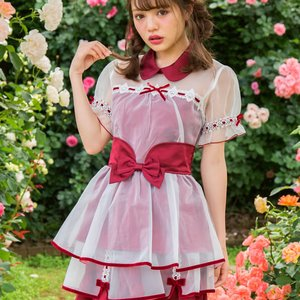 LIZ LISA Velour Ribbon x Organdy Top