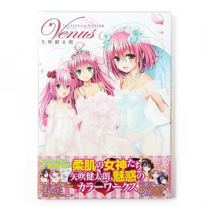 To Love-Ru: Darkness Artworks - Venus