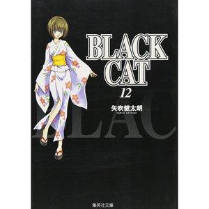 Books / Manga / Black Cat Vol. 12