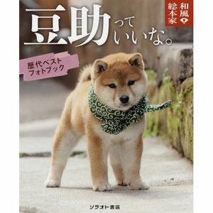 Wafu Sohonke Mamesuke tte Ii na Rekidai Best Photo Book Set