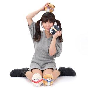 Mameshiba San Kyodai Kororin Dog Plush Collection (Standard)
