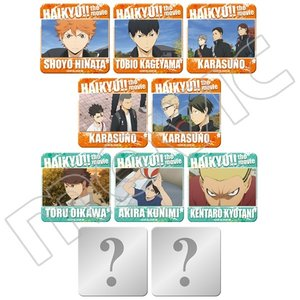 Haikyu!! the Movie: Talent and Sense Badge Collection Box Set