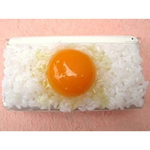 Nintendo DS Series Egg Over Rice Food Sample Case